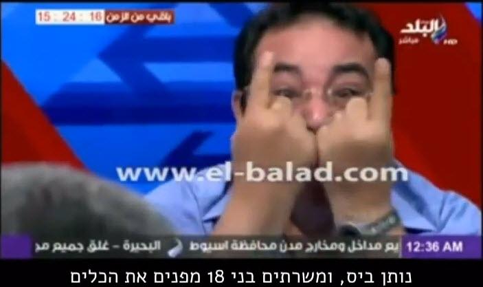 מצרי מתעצבן על חתונות